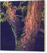 I Am Tree Wood Print