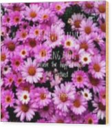 I Believe In Pink Daisies Wood Print