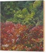 I Dream Of Poppies Wood Print