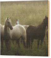 I Dreamed Of Horses Wood Print