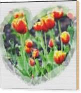 I Heart Tulips Wood Print