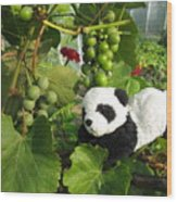 I Love Grapes Says The Panda Wood Print