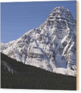 I Love The Mountains Of Banff National Park Wood Print