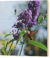 I Love The Purple Ones Wood Print
