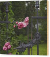 I Never Promised You A Rose Garden Wood Print