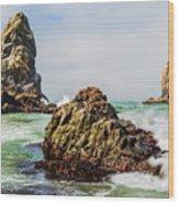 I Sea Said The Starfish Wood Print
