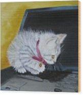 I See A Mouse Wood Print