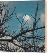 I See The Moon Wood Print