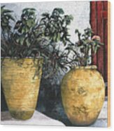 I Vasi Wood Print