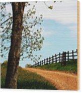 I Walk The Gravel Road Wood Print