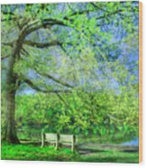 I Will Wait For You In Summer Wood Print