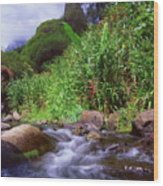 Maui Hawaii Iao Valley State Park Wood Print