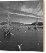 Iargo Springs 9502 Wood Print