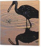 Ibis At Dusk Wood Print