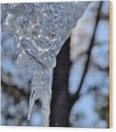 Ice Art 47 Wood Print