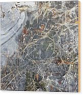 Ice Art Iv Wood Print