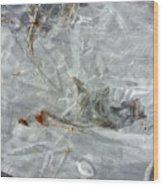 Ice Art V Wood Print