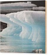 Ice Bears Wood Print by Elisabeth Van Eyken