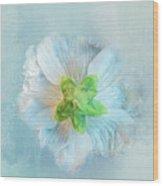 Ice Blue Under Wood Print