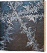 Ice Crossing Wood Print