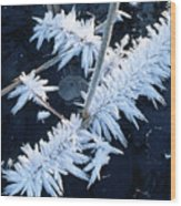 Ice Crystal Wood Print