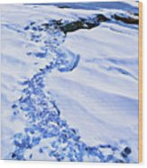 Ice Cube Creek Wood Print