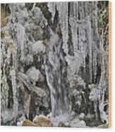 Ice Droplets  Wood Print