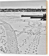 Ice Fishing On Lake Michigan Wood Print