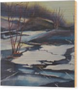 Ice Fragments Wood Print