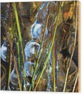 Ice Jewels On Grass Wood Print