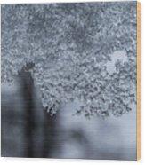 Ice Wood Print