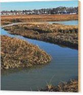 Ice On The Saltmarsh  Wood Print