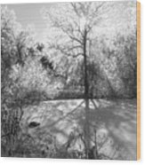 Ice Palace Wood Print