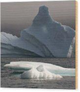 Ice Pinacle Wood Print by Elisabeth Van Eyken