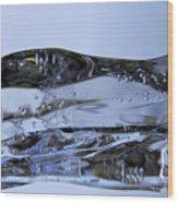 Ice Plane Wood Print