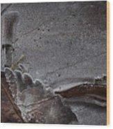 Ice Plastification Wood Print