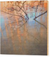 Ice Reflections 2 Wood Print