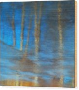 Ice Reflections Wood Print
