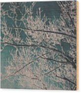 Ice Storm Branches - Blue Wood Print