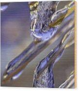 Ice Storm II Wood Print