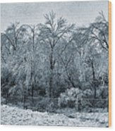 Ice Storm In The Flint Hills No 1 2724 Wood Print
