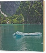 Ice Tracy Arm Alaska Wood Print