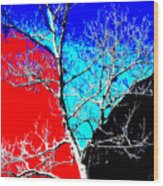 Ice Tree Wood Print by Eikoni Images