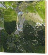 Ice Window Wood Print