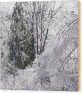 Ice Wonderland Wood Print