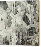 Ice Works Wood Print
