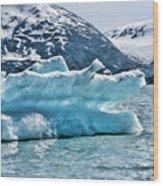 Iceberg Glacier Alaska  Wood Print