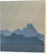 Iceberg In The Antarctic Peninusla Wood Print