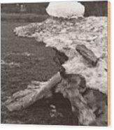 Iceberg Silo Wood Print