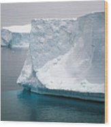 Icebergs In The Weddell Sea Antarctica Wood Print